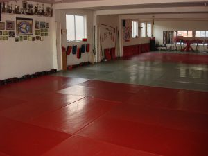 "<img src=""martial arts leicester.jpeg"" alt img =""martial arts leicester"">"